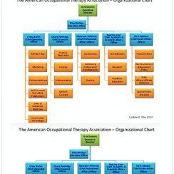 Staff Organization Chart Sample