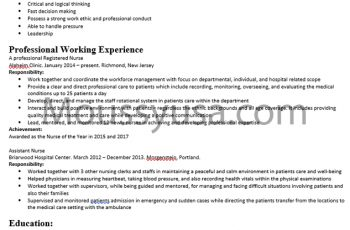 Nursing Resume Examples and Job Description