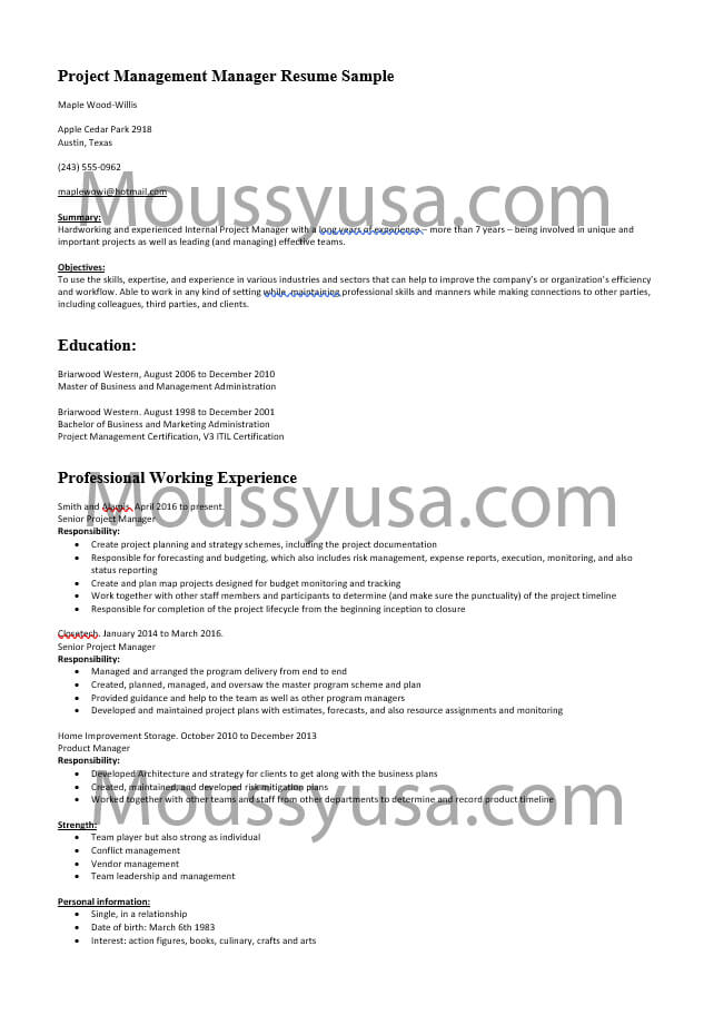 Project Management Manager Resume Template Sample