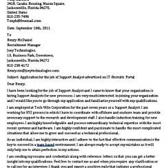 Business Support Analyst Cover Letter