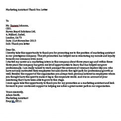 Marketing Assistant Thank You Letter