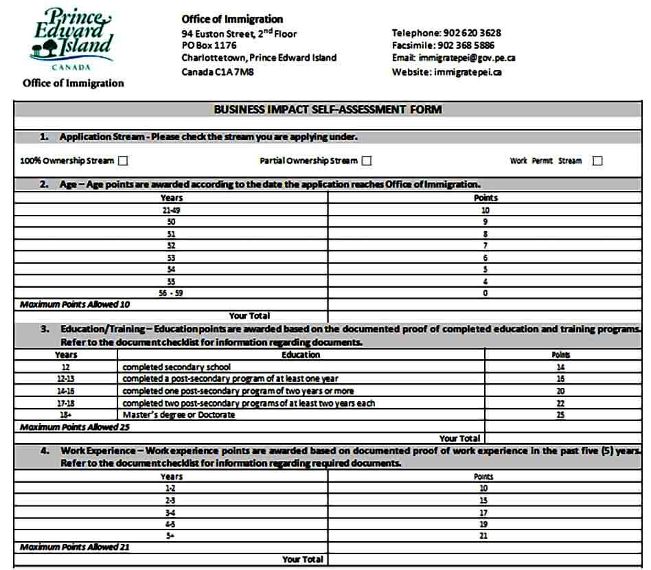 Business Impact Self Assessment Form