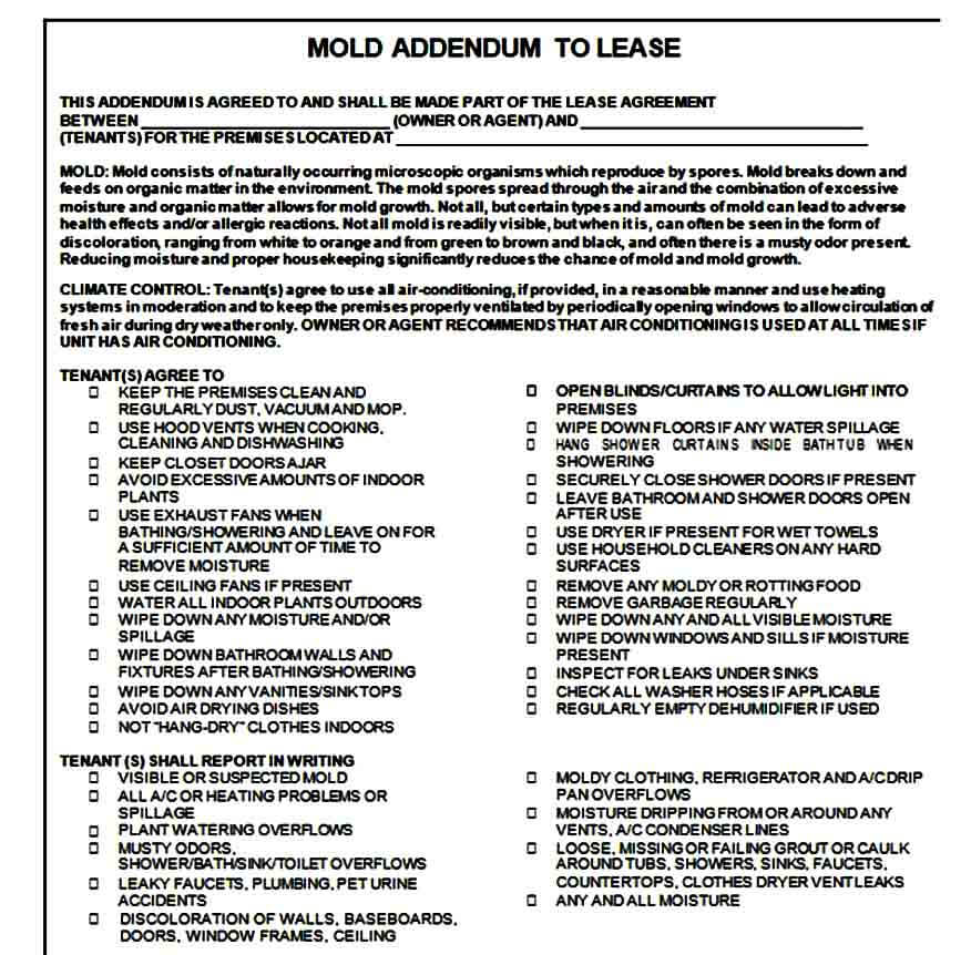 Mold Lease Addendum Form