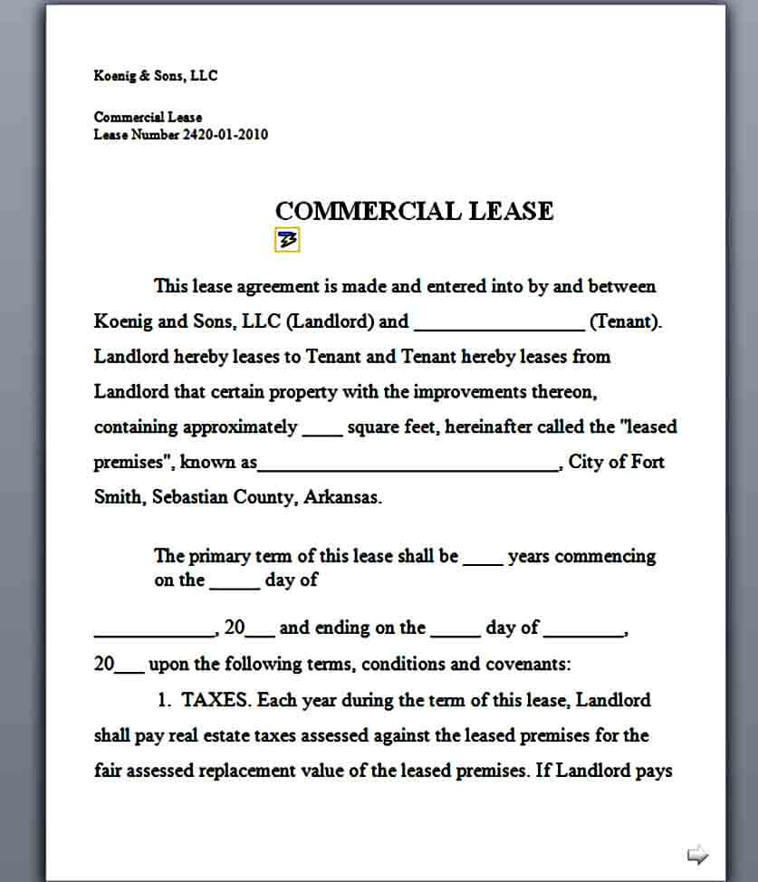 commercial triple net lease sample