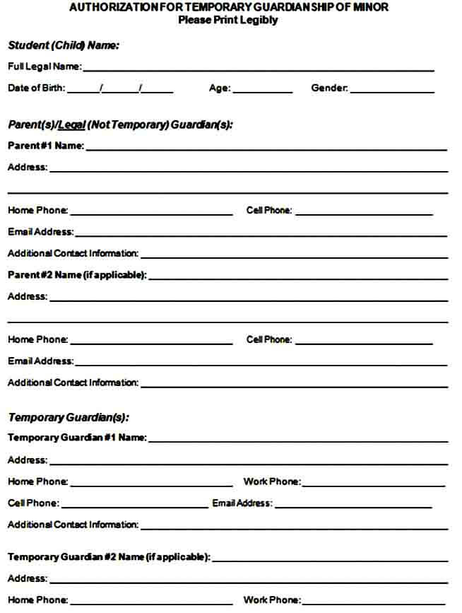 temporary guardianship form example