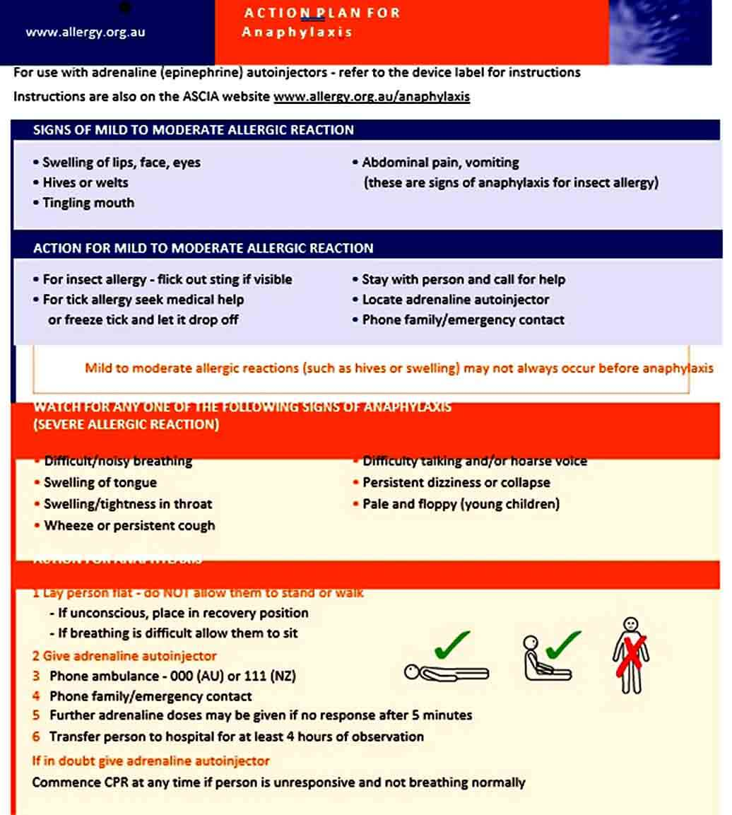Templates ASCIA Action Plan Anaphylaxis Generic