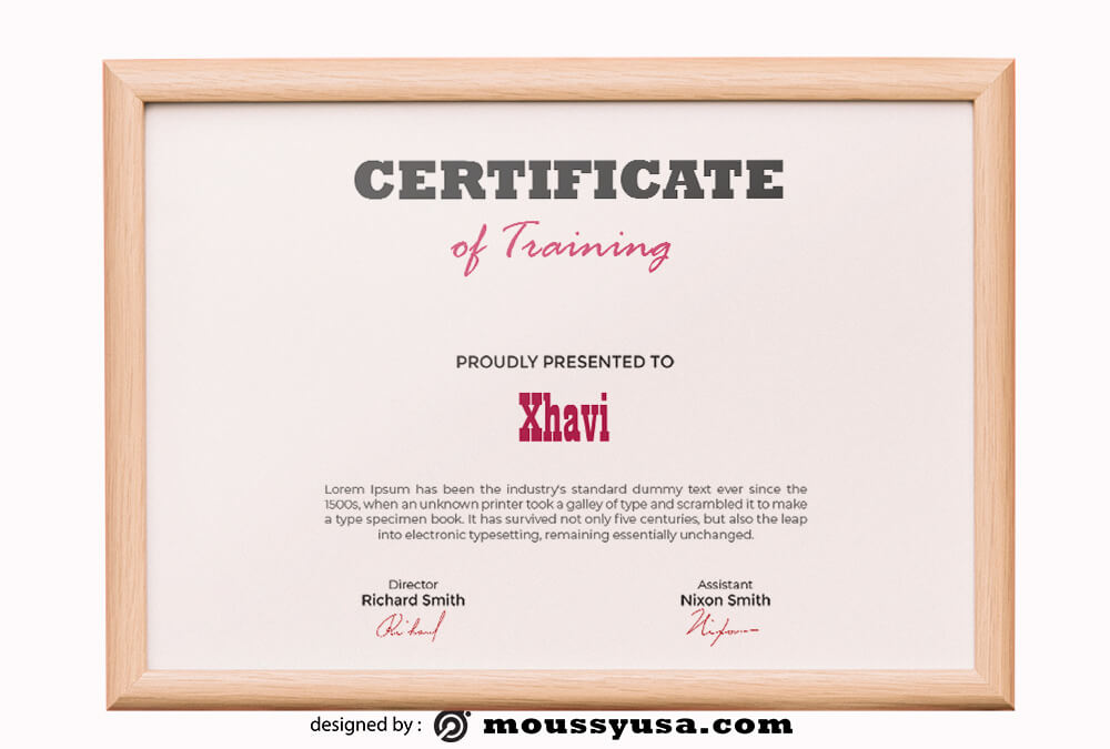 Training Certificate Template Example