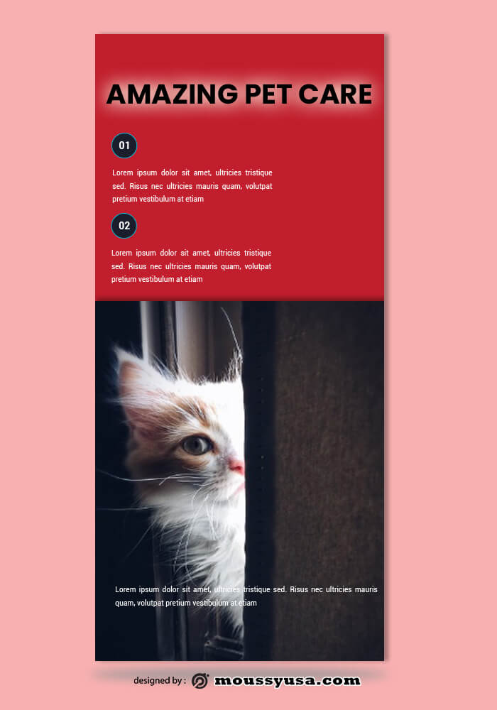 Pet Care Rack Card Template Ideas