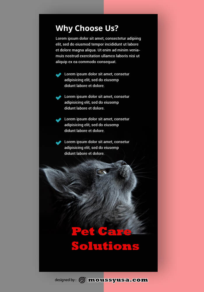 Sample Pet Care Rack Card Template