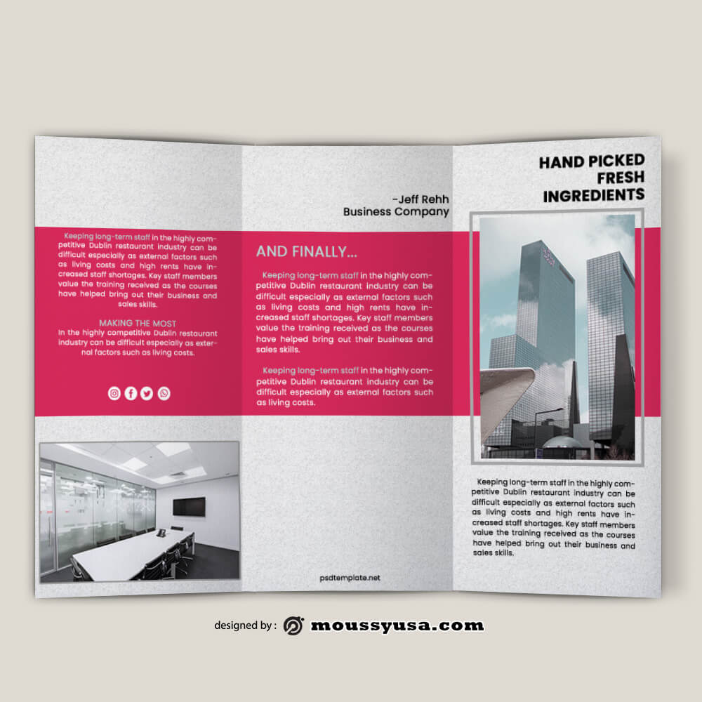 Business Company Brochure templates Design