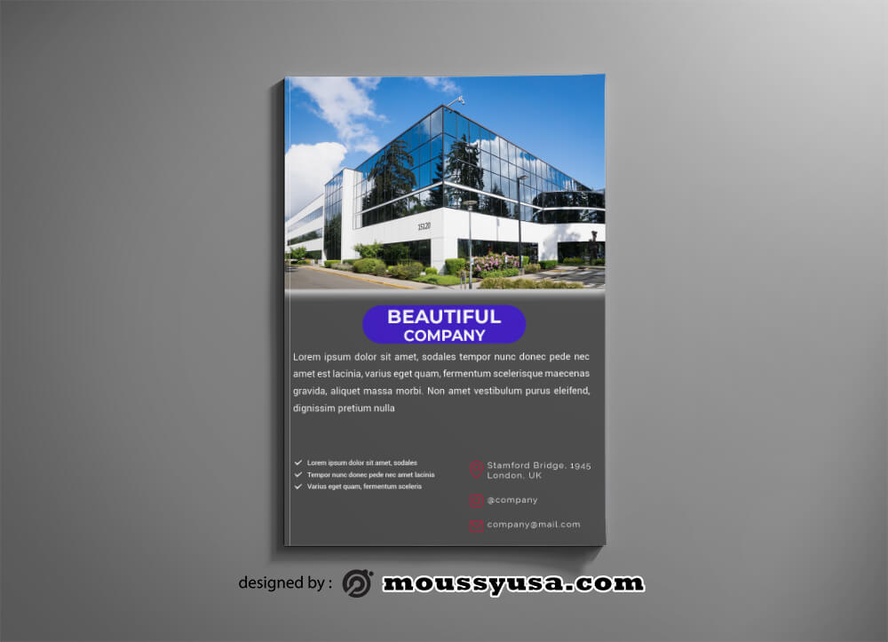 Company Catalog Design PSD