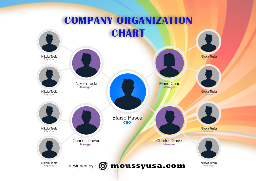 organizational chart example psd design