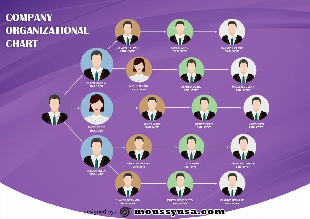 organizational chart free psd template