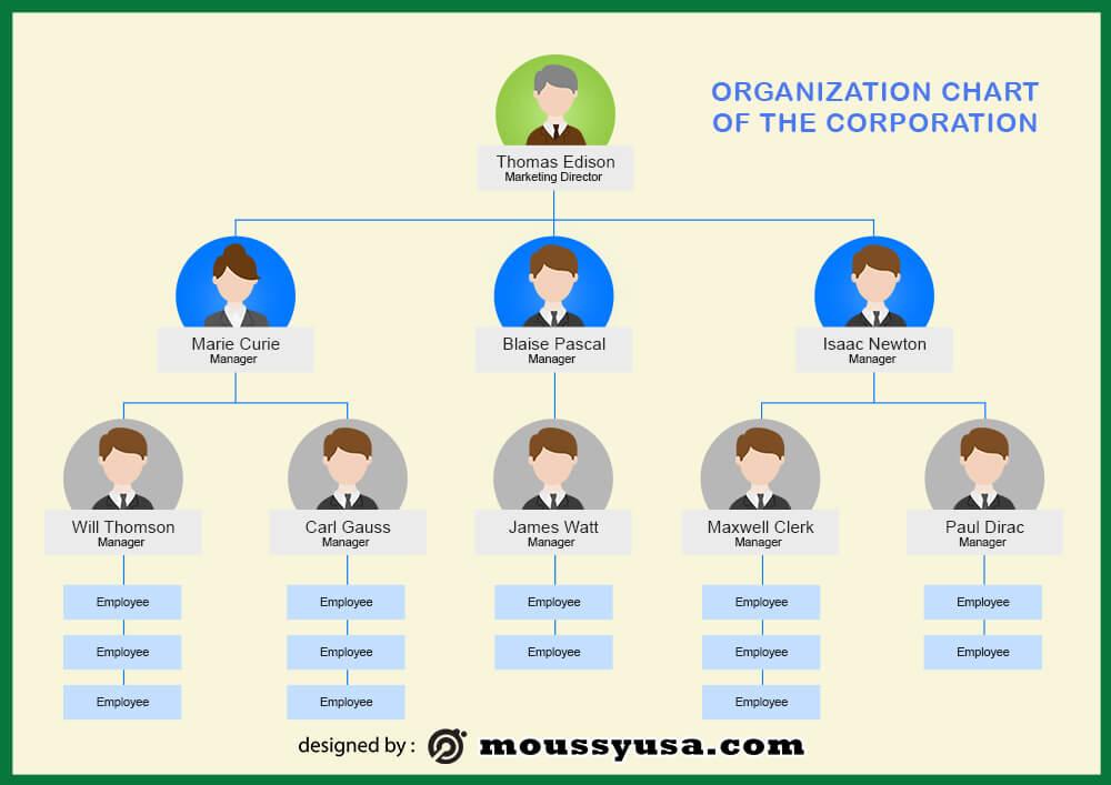 organizational chart psd template free