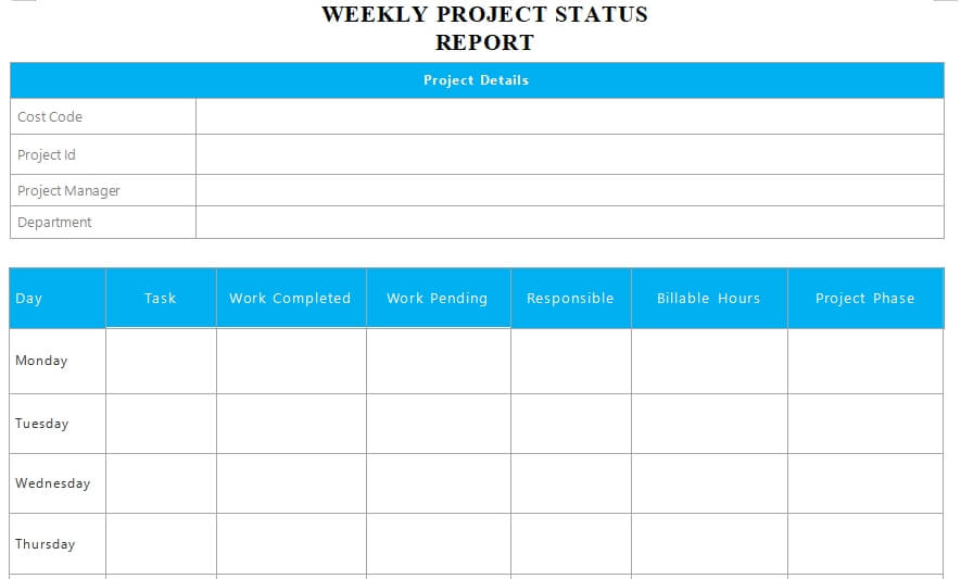 project status report word template free