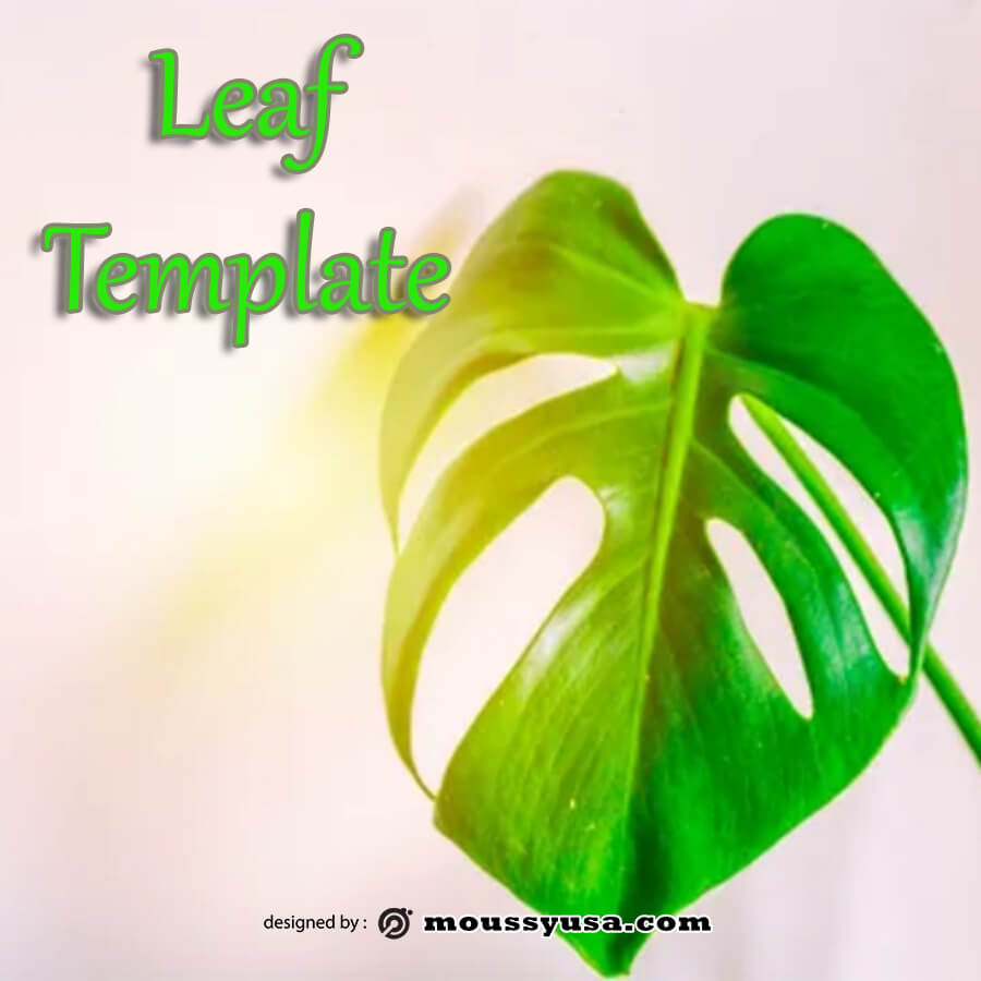 leaf template in photoshop free download