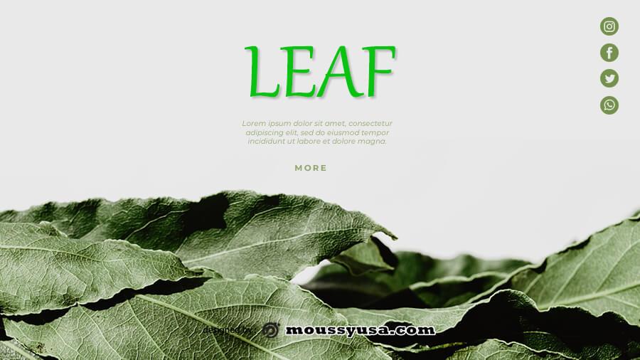 leaf template in psd design